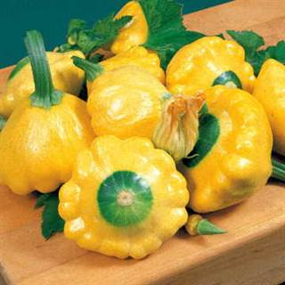 how to prepare sunburst squash
