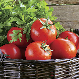 Know Before You Grow: Tomatoes
