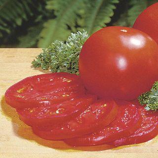 Better Bush Hybrid Tomato Seeds (P)Pkt of 30 seeds Image