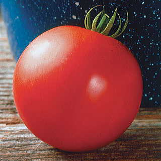 Mountain Fresh Hybrid Tomato Seeds