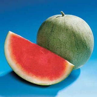 Charleston Jr. Watermelon Seeds