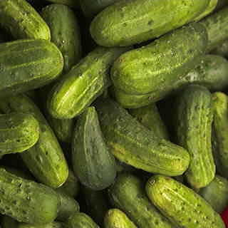 National Pickling Cucumber Seeds