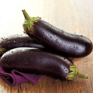 Orlando Hybrid Eggplant Seeds
