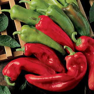 Corno di Toro Pepper Seeds