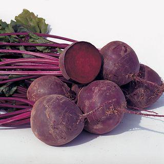 Boro Hybrid Organic Beet Seeds