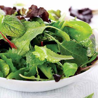 Salad Bowl Mix Organic Greens Seeds