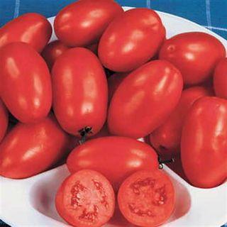 Organic Roma Tomato Seeds