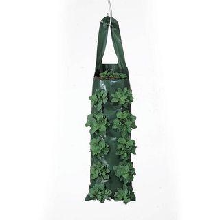 10 Hole Growin Bag - Pack of 4