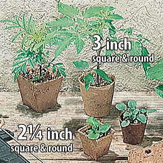 Jiffypots® 3-inch Square Biodegradable (Pack of 100) Image