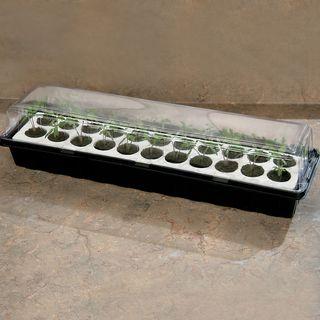 Parks Windowsill Seed Starter