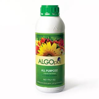 AlgoFlash All-Purpose Plus Fertilizer