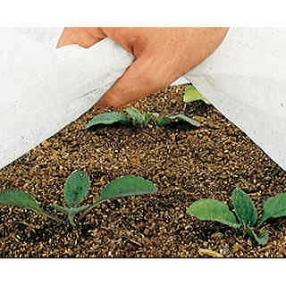 Parks 6ft x 30ft Plant Frost Protector Fabric