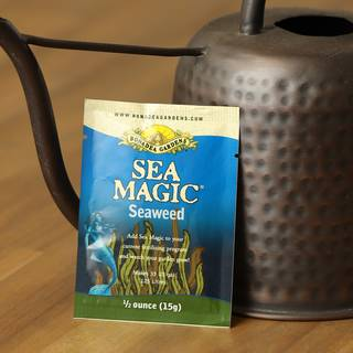Sea Magic Plant Growth Stimulant
