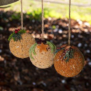Christmas Fruit & Nut Bell - Bird Feed