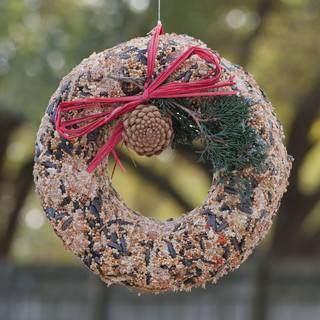 Wildfeast Seed Wreath