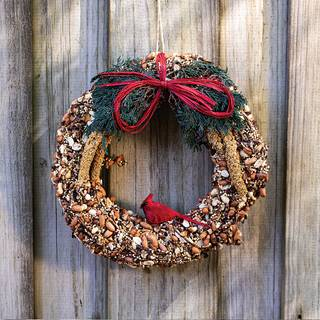 Birdseed Wreath 6-inch