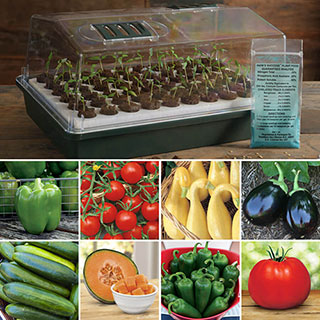 Parks Vegetable Seed Bio Dome Collection