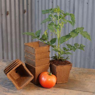 CowPots (set of 22 four inch tall pots)