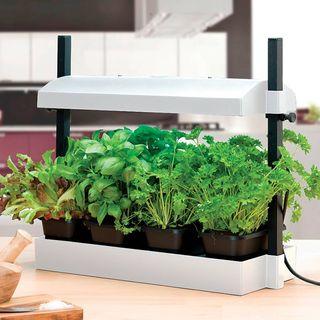 LED - Growlight Garden Micro - White