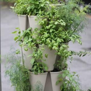5 Tier Greenstalk® Vertical Planter with Mover