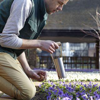 Stainless Bulb Planter