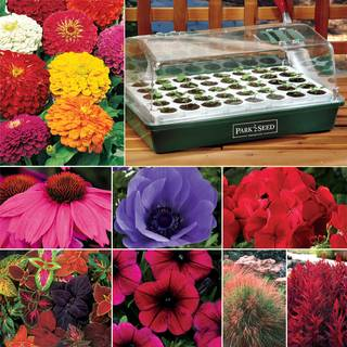 Parks Flower Lovers Garden Collection