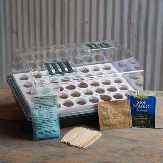 Parks Bio Dome for Beginners Collection