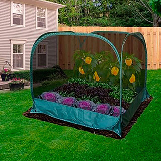 Pop-Net 2 Screen Mesh Plant Protector