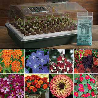Parks Flower Seed Bio Dome Collection