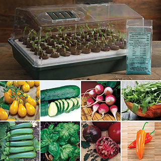 Parks Organic Seed Bio Dome Collection