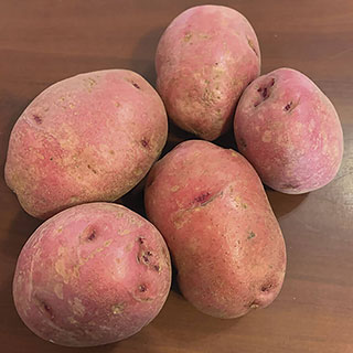 Dark Red Norland Potato - 2LB Bag