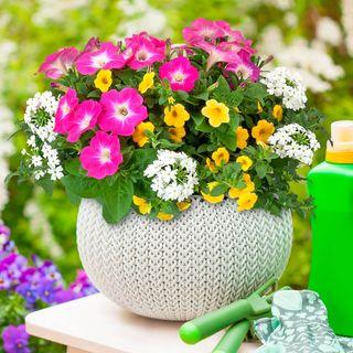 Blooming Block Kwik Kombos™ Chloes™