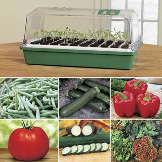 Park's Ultimate Vegetable Garden Collection