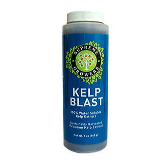 Kelp Blast Natural Superfood - 5 oz.