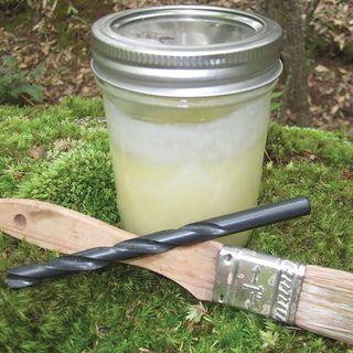 Log Plugging Kit for Growing Mushrooms