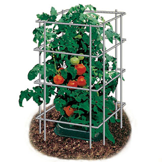 48 inch Parks Wire Tomato Pen - Pack of 3