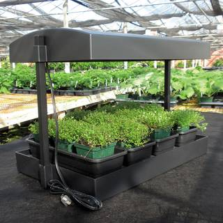 Complete Self-Watering Grow Light Garden Image