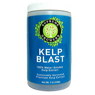 Kelp Blast Natural Superfood - 1 lb.
