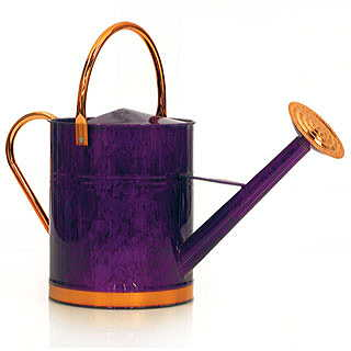 Deluxe Watering Can - 1 gallon