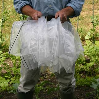 Easy Standard Poly Tunnel Image