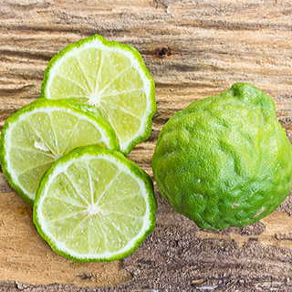 Citrus Kieffer Lime