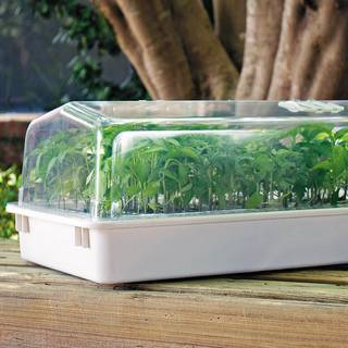 Pro Dome Mini Greenhouse