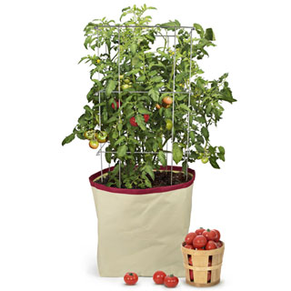 Harvest Grow Bag