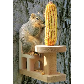 Squirrel Feeder Table & Chair