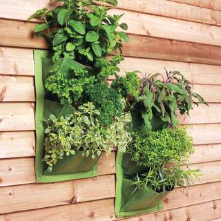 Verti-Plants® (set of 2)