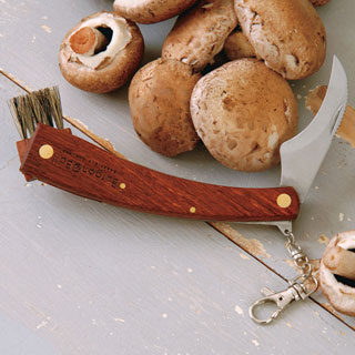 Mushroom Collecting Knife