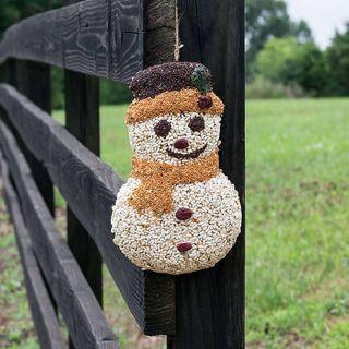 Frosty the Seedman