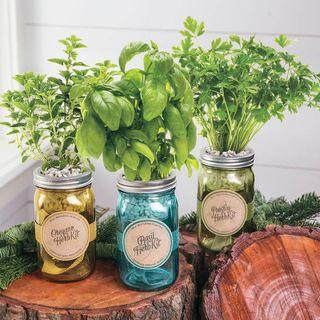Italian Garden Jar Gift Set