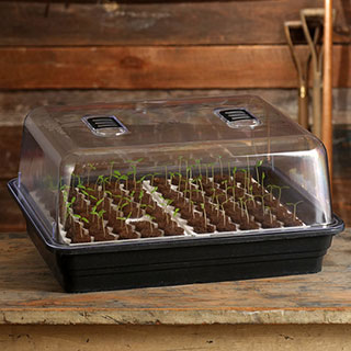 Parks Double Bio Dome with 80 Jumbo Cells