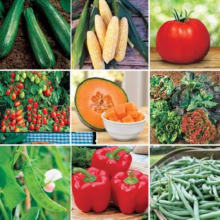 Customer Favorites Vegetable Collection